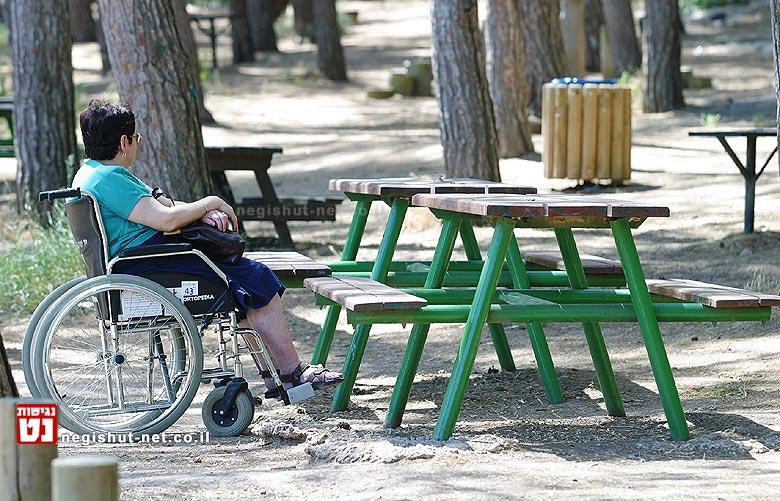 פיקניק, פארק מנשה