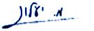 חתימת בוגי יעלון