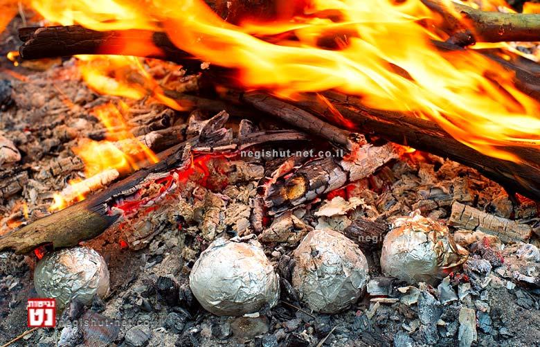את תפוחי-האדמה והבצלים מומלץ להשחיל על חוט תיל